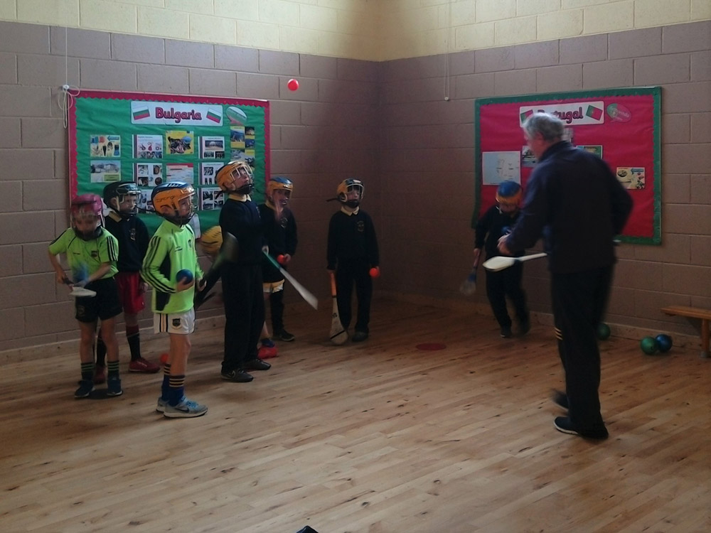 hurling-training